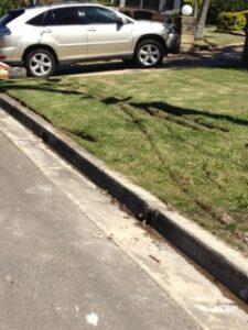 Weight bearing great turf driveways